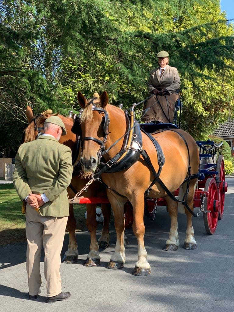 Horsedrawn Carriage from Horsedrawn Occasions